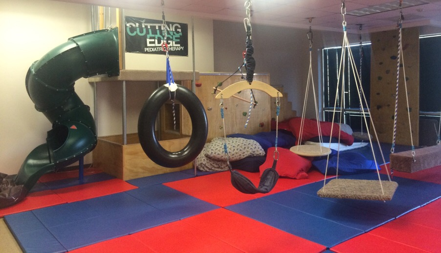 occupational therapy gym