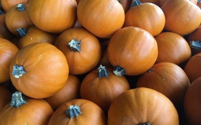 Why Pumpkin Carving is a Great Sensory Activity